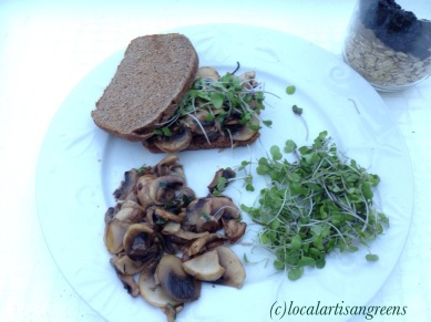Breakfast with our Microgreens and sautéed mushrooms and two slices of home made toast. Oats pictured on the side