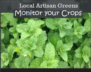 Monitor-your-Crops