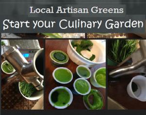 Start-You-Culinary-Garden